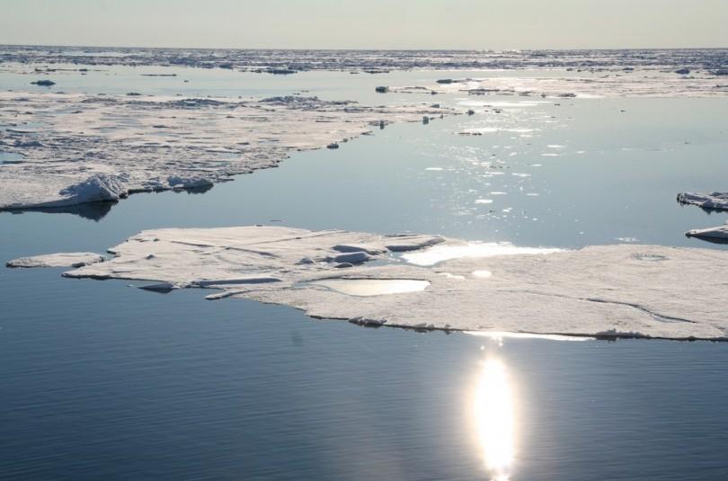Беды нашего климата