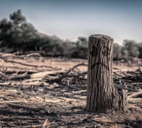 Закономерности изменения климата