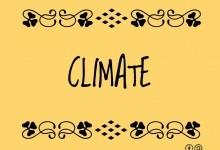 Первые этапы мелиорации климата